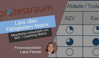 lara über fähigkeiten matrix